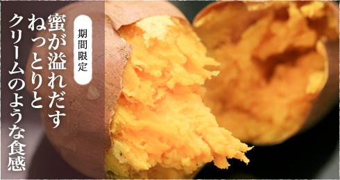 [期間限定][生芋通販]蜜が溢れだすねっとりとクリームのような食感